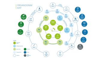 Organogram 2021 PDF ENG